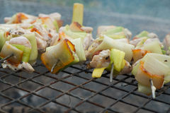 Chicken pieces on skewers Royalty Free Stock Photos
