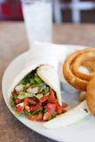 Chicken Pita Wrap Sandwich Stock Image