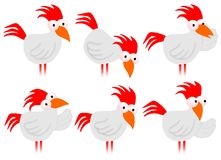Chicken Poses Stock Images