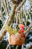 Chicken pot Stock Image