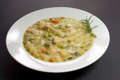 Chicken pot pie soup with rosemary Royalty Free Stock Images