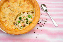 Chicken pot pie Royalty Free Stock Image