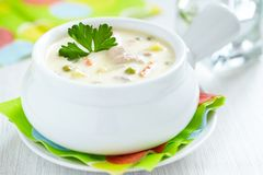 Chicken pot soup Stock Image