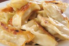 Chicken potstickers. Macro photo of chicken and vegetable potstickers Stock Image