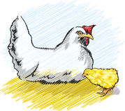 Chicken in a poultry farm. Illustration made in adobe illustrator Royalty Free Stock Images
