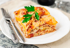 Chicken and Pumpkin Lasagna Royalty Free Stock Photo