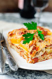 Chicken and Pumpkin Lasagna Stock Images