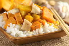 Chicken, Pumpkin and Sweet Potato Curry Royalty Free Stock Photography