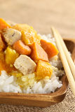 Chicken, Pumpkin and Sweet Potato Curry Royalty Free Stock Images