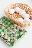 Chicken and quail eggs Stock Photos