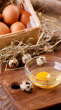 Chicken and quail eggs Stock Photo