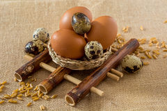 Chicken and quail eggs on bamboo pad Royalty Free Stock Images