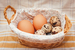 Chicken and quail eggs in a basket. Still life of chicken and quail eggs in a basket Royalty Free Stock Image