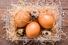 Chicken and quail eggs in a basket with straw. Top View Royalty Free Stock Photo