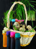 Chicken and quail eggs in a basket surrounded by food colourings. Prepared to colour the eggs Royalty Free Stock Photos