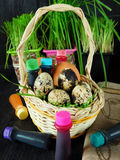 Chicken and quail eggs in a basket surrounded by food colourings. Prepared to colour the eggs Royalty Free Stock Image
