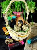 Chicken and quail eggs in a basket surrounded by food colourings. Prepared to colour the eggs Royalty Free Stock Images