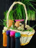 Chicken and quail eggs in a basket surrounded by food colourings. Prepared to colour the egg Royalty Free Stock Image