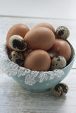 Chicken and quail eggs in bowl. Close up of brown chicken eggs and quail eggs in blue bowl royalty free stock photo