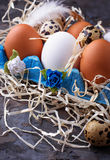 Chicken and quail eggs in carton box, Easter concept Royalty Free Stock Image