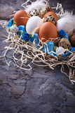 Chicken and quail eggs in carton box, Easter concept Stock Photos