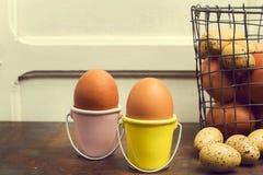 Chicken and quail eggs stock photos