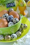 Chicken and quail eggs in colorful porcelain dish. Easter Stock Images