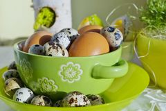 Chicken and quail eggs in colorful porcelain dish. Easter Royalty Free Stock Image