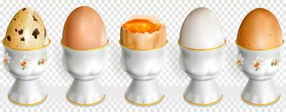 Chicken and quail eggs on a egg cup. Chicken and quail raw eggs on a egg cup. Vector illustration Royalty Free Stock Photos