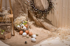 Chicken and quail eggs Royalty Free Stock Photos