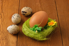 Chicken and quail eggs with a green nest. On wooden background Royalty Free Stock Photo