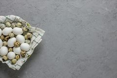 Chicken and quail eggs in a plate with a towel on a gray concrete background. Top view. Flat lay. Postcard for Easter. And Spring Holidays Stock Image