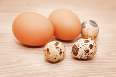 Chicken and quail eggs. Royalty Free Stock Photo