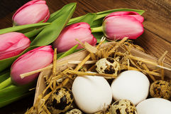 Chicken and quail eggs with tulips. Easter background Royalty Free Stock Photo