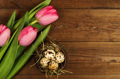Chicken and quail eggs with tulips. Easter background Stock Photography
