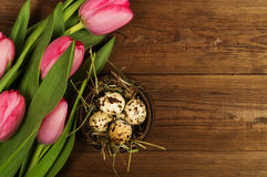 Chicken and quail eggs with tulips. Easter background Stock Photos