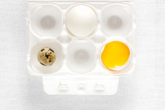 Chicken and quail eggs on white Stock Image