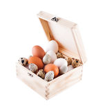 Chicken and quail eggs in a wooden box. Isolated on white Royalty Free Stock Photos