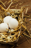 Chicken and quail eggs on the wooden table. Easter background Royalty Free Stock Photography