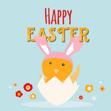 Chicken Rabbit in egg greeting card. Happy Easter cartoon design with cute chick and flowers. Royalty Free Stock Image