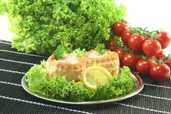 Chicken ragout Royalty Free Stock Image