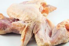 chicken raw wings 免版税库存照片