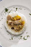 Chicken and rice Royalty Free Stock Images