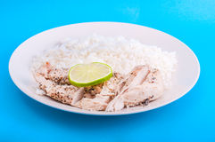 Chicken with rice and lemon on plate Stock Image