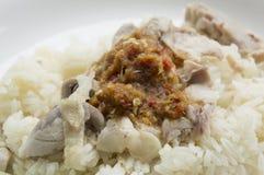 Chicken rice meal dinner eat tasty Thai concept Stock Image