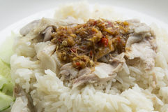 Chicken rice meal dinner eat tasty Thai concept Stock Images