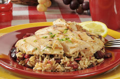 Chicken rice salad Royalty Free Stock Image