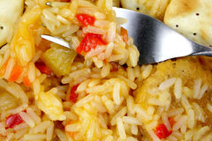 Chicken Rice Sweet Sour Sauce up Close Stock Images
