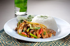 Chicken with rice and vegetables Stock Image