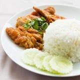 Chicken Rice Royalty Free Stock Photo